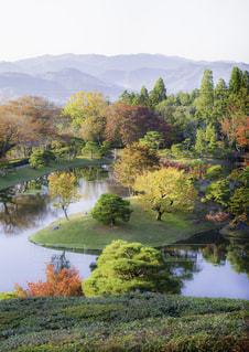 木々 に囲まれた水の体の写真・画像素材[927282]