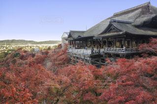 大きなレンガの草と木がある建物の写真・画像素材[929930]