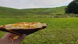 草原でサンドウィッチの写真・画像素材[3727443]
