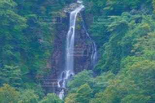 森の中の大きな滝の写真・画像素材[3713372]