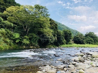 夏の日の川の写真・画像素材[3704401]