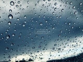 雨粒の写真・画像素材[3717439]