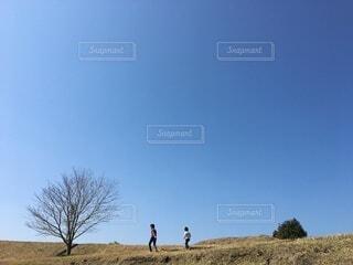 快晴散歩の写真・画像素材[3786832]
