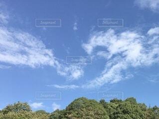 青い空の写真・画像素材[3786903]