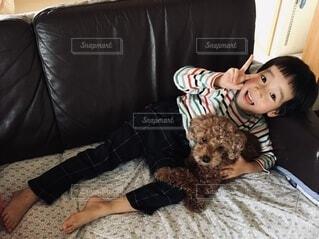 犬と一緒にソファーでごろりの写真・画像素材[4020313]