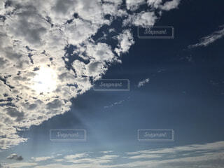 見上げた空の写真・画像素材[3796497]