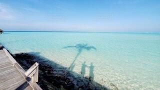 水平線の写真・画像素材[3719785]