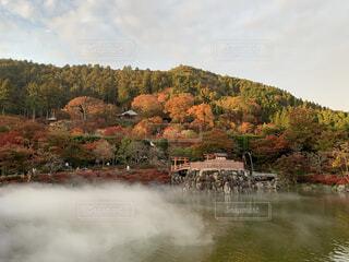 秋の寺の写真・画像素材[3714449]