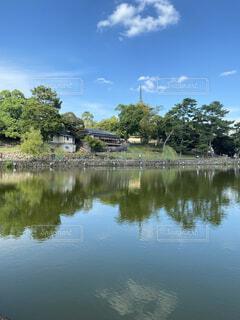 奈良の写真・画像素材[4770795]