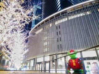 建物,屋外,クリスマス,明るい,グランフロント大阪,グランフロントクリスマス,緑のクマ