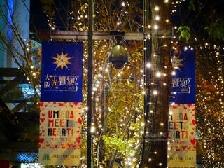クリスマス,装飾,明るい,グランフロント大阪,シャンパンゴールド,グランフロントクリスマス