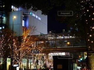 建物,夜,屋外,クリスマス,明るい,グランフロント大阪,グランフロントクリスマス