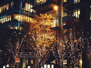 建物,夜,屋外,イルミネーション,クリスマス,明るい,グランフロント大阪,シャンパンゴールド,グランフロントクリスマス