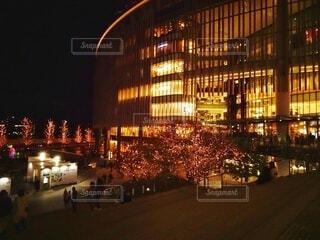 建物,夜,屋外,黄色,美しい,クリスマス,明るい,グランフロント大阪,シャンパンゴールド,グランフロントクリスマス,テッドイベール,緑のくま