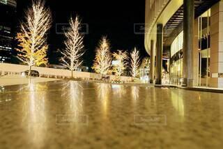 建物,夜,きれい,黄色,水面,樹木,キラキラ,リフレクション,明るい,電飾,グランフロント大阪,シャンパンゴールド,グランフロントクリスマス