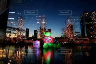 夜,水面,イルミネーション,キラキラ,クリスマス,装飾,くま,明るい,グランフロント大阪,シャンパンゴールド,シャンパンゴールドイルミネーション,グランフロントクリスマス,テッドイベール,緑のくま,アグリークリスマスセーター
