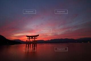 赤い宮島の写真・画像素材[3715425]