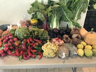 旬の野菜と果物の写真・画像素材[3770245]