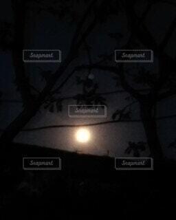 お月様こんばんは。の写真・画像素材[3759144]