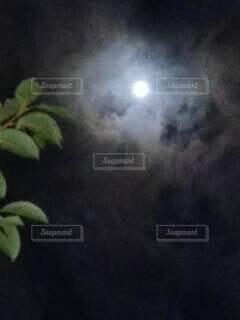 自然,風景,空,雲,月,明るい,丸い,照らす,傘かぶり月