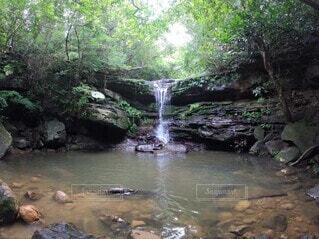 西表島の滝の写真・画像素材[3822557]