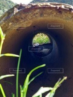 穴の向こう側の写真・画像素材[3799028]