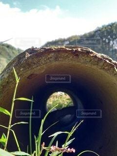 穴の向こう側2の写真・画像素材[3799181]