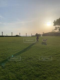 愛犬との時間の写真・画像素材[3752913]