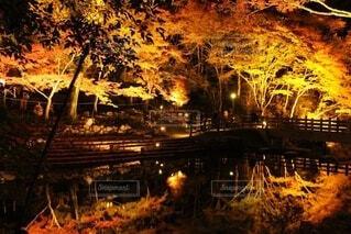 岩屋堂公園の写真・画像素材[3748396]
