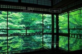 瑠璃光院の写真・画像素材[3750782]