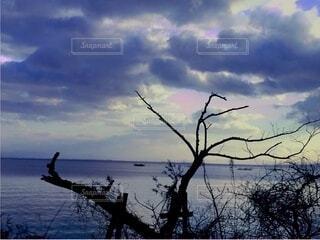 空の雲の群の写真・画像素材[3756705]