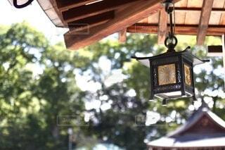 神社の灯りの写真・画像素材[3751282]