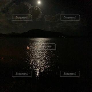 月明かりに照らされる白鳥たちの写真・画像素材[3751046]
