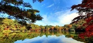 修法ヶ池の写真・画像素材[3853865]