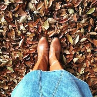 秋の写真・画像素材[3793755]