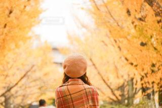 銀杏並木とストールの写真・画像素材[3764087]