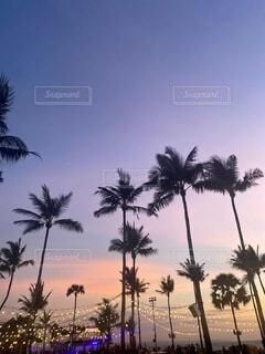 バリ島の夕日の写真・画像素材[3754321]