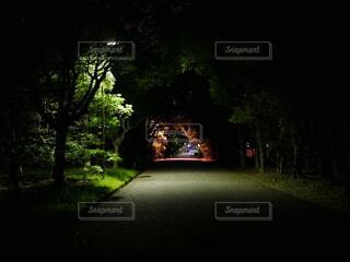 夜の街の通りの眺めの写真・画像素材[3759723]