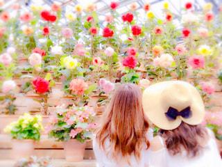 花の前に立っている人の写真・画像素材[711789]