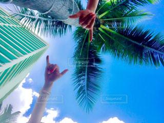 海,ハワイ,アロハ,ハンドサイン