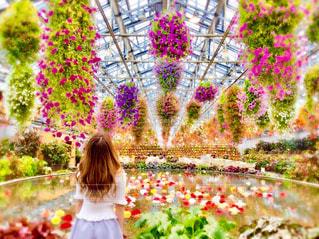 花の前に立っている女性の写真・画像素材[888406]