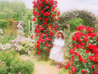 花の前に立っている人 - No.888693