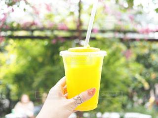 プラスチック製のカップを持っている手の写真・画像素材[928109]