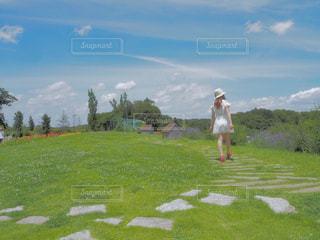 芝生のフィールドに立っている人の写真・画像素材[1019922]