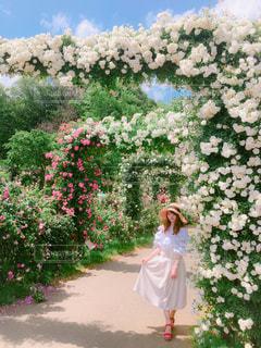 花の前に立っている女性 - No.1115209