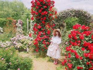 花の前に立っている人 - No.1115210