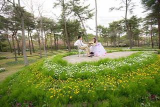庭に立っている人の写真・画像素材[1371322]