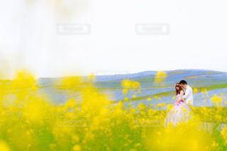 花畑の写真・画像素材[1418834]