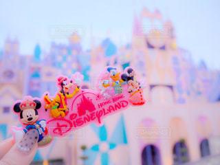ピンク,香港,ディズニーランド,ディズニー,マグネット,pink