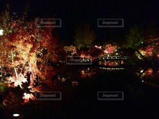夜の街の景色の写真・画像素材[1634371]